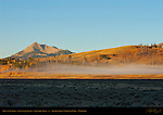 Mist at Sunrise, Swan Lake Flats, Electric Peak, Yellowstone National Park, Wyoming