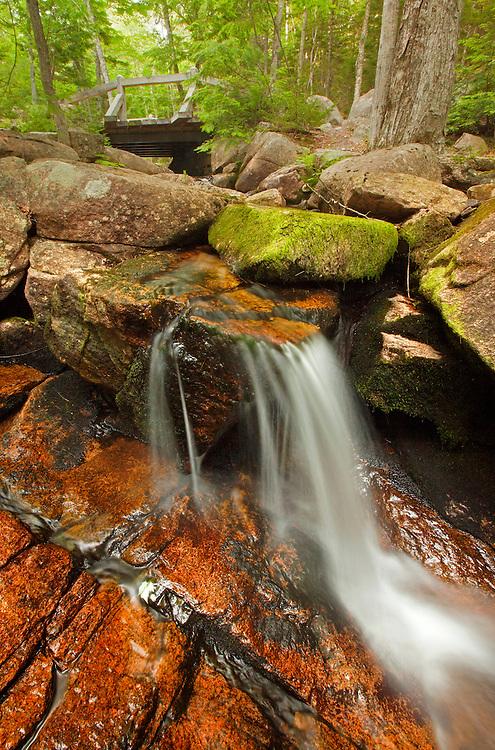 Jordan Stream cascades along the Jordan Stream Trail in Acadia National Park, Maine, USA