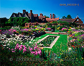 Tom Mackie, FLOWERS, photos, Packwood House and Gardens, Lapworth, Warwickshire, England, GBTM892326-1,#F# Garten, jardín