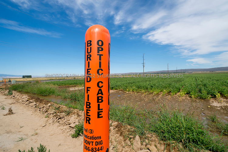 8/21/2012--Quincy, WA...A warning post to mark high speed optic fiber cables placed next to a road and bean field in Quincy, WASH. ..Quincy has seen rapid growth of data centers, or server farms, spurred on by tax rates and low cost electricity produced by the Grant Count PUD's nearby hydroelectric dams. Microsoft and five other companies, including Yahoo and Dell, have brought big, energy-hungry data centers to Quincy in recent years, converting former bean fields into vital hubs on the internet...©2012 Stuart Isett. All rights reserved.