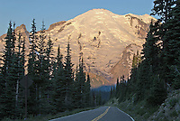 View of volcanic Mount Rainier's 14,410 foot summit in early morning light on Sunrise Road, descending towards it. Little Tahoma is the rocky pinnacle to its left. Mount Rainier National Park, Washington State.....Photographed on digital media.
