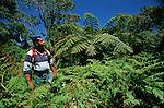 Parc national de la Montagne d Ambre..