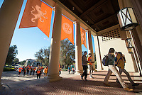 Hundreds of Occidental College students, faculty, staff, administrators and alumni volunteer on projects that range from canvassing, gardening and food harvesting to library sorting, food distribution and more at 20 community partners across Los Angeles as part of the annual MLK Day of Service, Feb. 1, 2014. (Photo by Marc Campos, Occidental College Photographer)