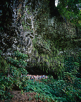 Fern Grotto, Kauai, Hawaii, USA.