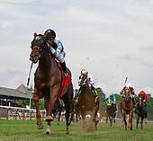 6th Mahony Stakes - Archidust