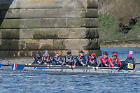 Mortlake/Chiswick, GREATER LONDON. United Kingdom. Hereford Rowing Club, W.MasC.8+, competing at the 2017 Vesta Veterans Head of the River Race, The Championship Course, Putney to Mortlake on the River Thames.<br /> <br /> <br /> Sunday  26/03/2017<br /> <br /> [Mandatory Credit; Peter SPURRIER/Intersport Images]