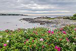 Gooch's Beach in Kennebunk, Maine, USA