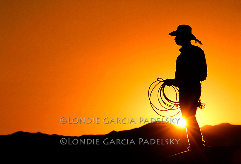 Silhouetted cowboy at sunset