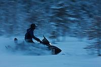 Europe/Finlande/Laponie/Env de Levi:  Raid en Motoneige