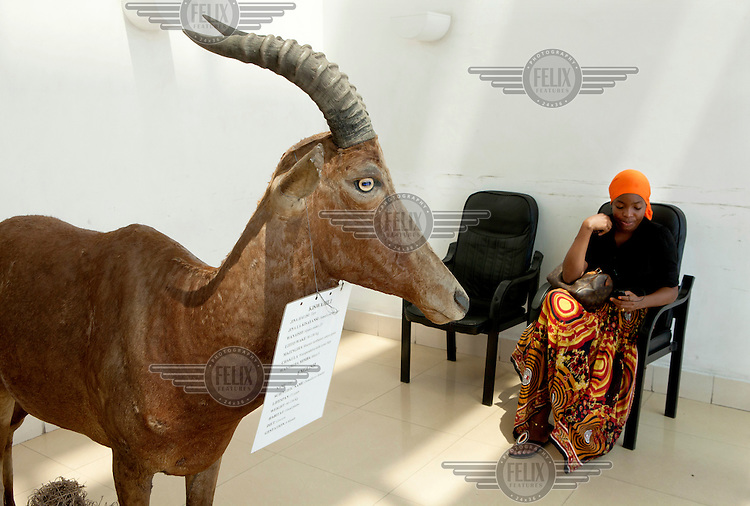 A woman waits, beside a model Topi, in the foyer of Tanzania's Ministry for Natural Resourses and Tourism.