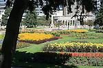 TREE FRAME DENVER's CIVIC CENTER DISPLAYS SEVERAL TYPES of FLOWERS