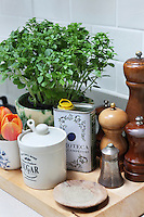 Detail of a collection of salt and pepper grinders, cans of oil, and herbs on one of the work surfaces in Kally Ellis's kitchen