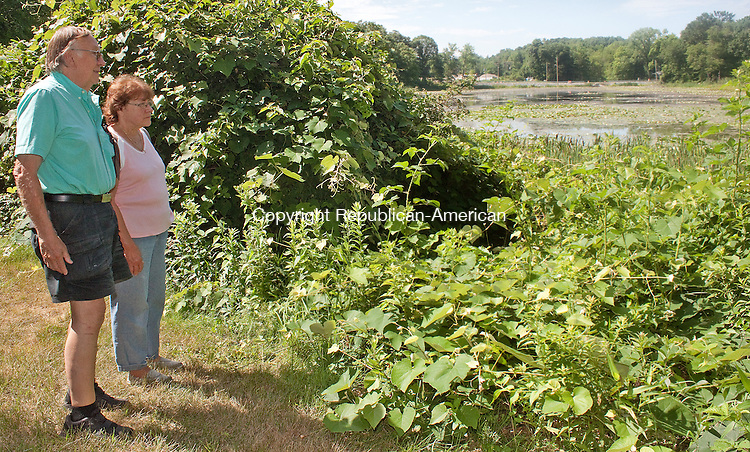 WATERBURY- JULY 10 2014 070914DA03- Neighbors on Allen St. in Waterbury Wayne Thompson, left, and Antoinette D'Almeida look over what once was a beautiful area but since the water level problems it has turned once-pretty Pritchard's Pond into a swamp.<br /> Darlene Douty Republican American