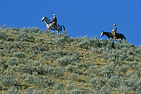 Cowboys on horses on skyline. Ponderosa Ranch, Seneca, OR.