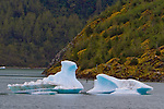 A solitary Stand-Up Paddleboarder paddles through the icey, iceberg filled waters that are at the base of the Mendenhall Glacier in Juneau, Alaska