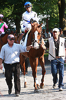 "Shackleford & John Velazquez holds off Caleb's Posse to win the Grade I ""Win & You're In"" Metropolitan Mile Handicap for 3 year olds & up, going 1 mile at Belmont Park.  Trainer Dale Romans.  Owners Michael Lauffer & Wd Cubbedge"