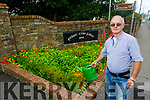 Jim Cahill of the Abbeyfeale Tidy Towns watering the plants in Abbeyfeale on Thursday