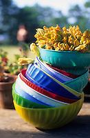 """Europe/Italie/Calabre/Filandari : Fleurs de courgettes à l'auberge """"Frammiche"""" - Stylisme : Valérie LHOMME"""