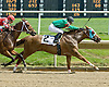 Sophisticated Lady winning at Delaware Park on 4/25/09