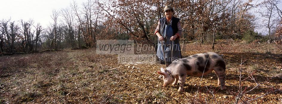 Europe/France/Midi-Pyrénées/46/Lot/Lalbenque: Marthe Delon lors du cavage (Recherche) de ses truffes sur le causse avec son cochon Kiki  Auto N°: 2007-101