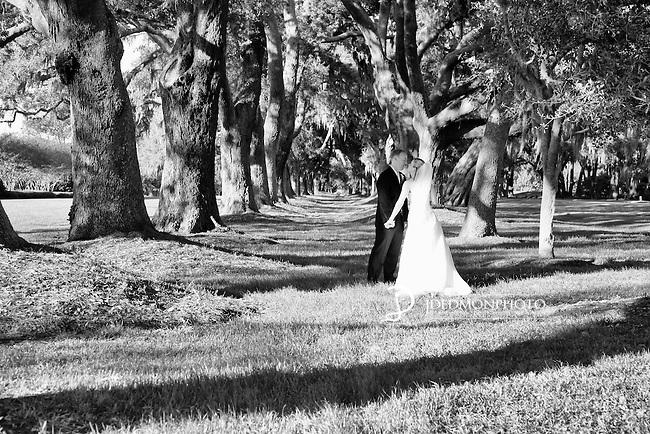 Shawn and Stephanie Wedding Day