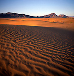 Sand dunes at dawn in the Sahara desert near Zagora, Morocco