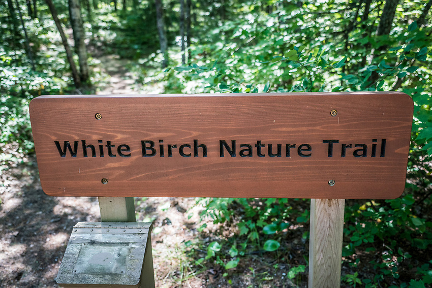Scenes from along the White Birch Trail at Pictured Rocks National Lakeshore near Munising, Michigan.