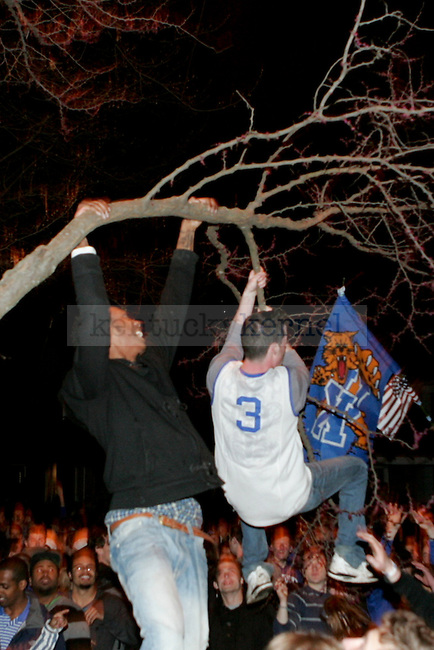 UK fans try to break tree branches while celebrating after UK beat Wisconsin in Lexington, Ky., on Sunday, April, 6, 2014. Photo by Jonathan Krueger | Staff