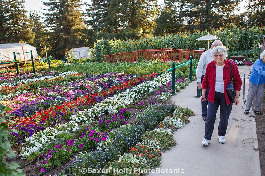 Elderly residents of Healdsburg Senior Living Center strolling and exercising in the Community garden