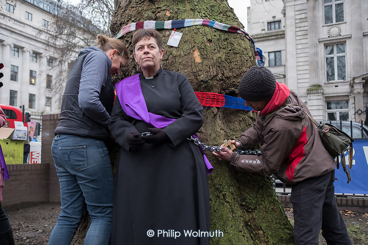 Rev'd Anne Stevens, Vicar of St Pancras, chained to one of more than 200 mature trees before felling begins to make way for HS2 construction trucks at Euston station, London.