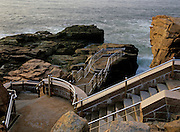 Thunder Hole viewing area located next to Park Loop road in Acadia National Park, Maine USA.