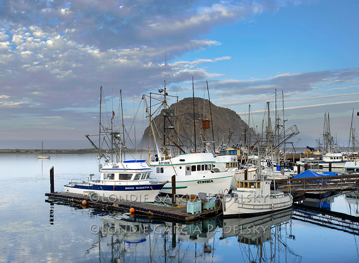 Dawn at Morro Bay Boat Harbor, Central Coast, California