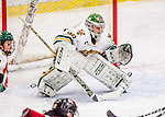 25 November 2016: University of Vermont Catamount Goaltender Madison Litchfield, a Senior from Williston, VT, in third period action against the Saint Cloud State Huskies at Gutterson Fieldhouse in Burlington, Vermont. The Lady Cats defeated the Huskies 5-1 to take the first game of the 2016 Windjammer Classic Tournament. Mandatory Credit: Ed Wolfstein Photo *** RAW (NEF) Image File Available ***