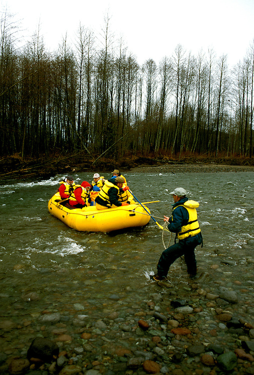 Canada, British Columbia.  Rafting through bald eagles at Brackendale.  Photo #: caneag105..Photo copyright Lee Foster, 510/549-2202, lee@fostertravel.com, www.fostertravel.com