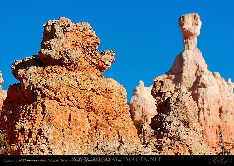Elephant and ET Hoodoos, Queen's Garden Trail, Bryce Canyon National Park, Utah