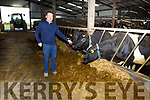 Tim Leahy, a farmer from Kilmorna, Listowel using the moo monitor from Dairymaster and the device is attached to the cow and sends information directly to the farmer on the individual health of the cow.