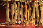 Dried cod hanging in fish market Torget market square area of Vagen harbour, Bergen, Norway
