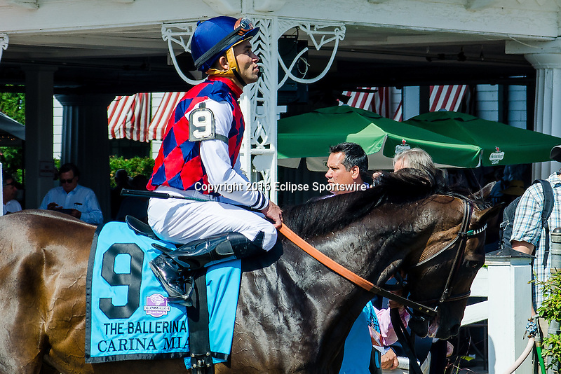 SARATOGA SPRINGS - AUGUST 27: Carina Mia #9, ridden by Joel Rosario, during the post parade before the Ballerina Stakes on Travers Stakes Day at Saratoga Race Course on August 27, 2016 in Saratoga Springs, New York. (Photo by Dan Heary/Eclipse Sportswire/Getty Images)