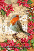 Isabella, CHRISTMAS SYMBOLS, WEIHNACHTEN SYMBOLE, NAVIDAD SÍMBOLOS, realistic animals, realistische Tiere, animales re, paintings+++++,ITKE529128-L,#XX#