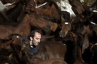 A man walk arround hundreds of horses during the Rapa das Bestas in Sabucedo (Galicia), on July 2, 2011. When summertime comes in Galicia (Northwest of Spain), the use of &ldquo;curro&rdquo; begins. A ritual which preserves the free and wild spirit of this region which has remained traditionally tied to nature.<br />
