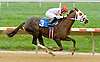 Palaciega winning at Delaware Park on 10/6/12