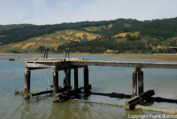 dock on Bolinas Lagoon