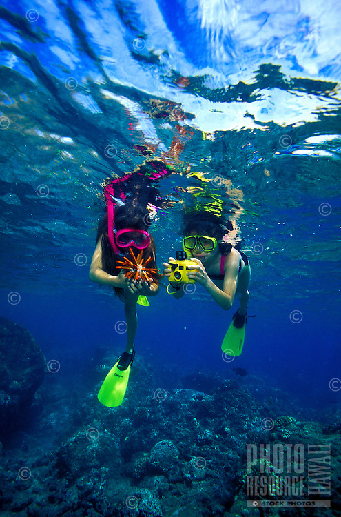 Two young girls (ages 9&11)discover a Slate Pencil Sea Urchin on Hanauma Bay's beautiful coral reef with an underwater camera ready  to capture the moment.