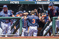Cal State Fullerton outfielder Tyler Stieb (3) is greeted in the dugout after scoring during the NCAA College baseball World Series against the LSU Tigers on June 16, 2015 at TD Ameritrade Park in Omaha, Nebraska. LSU defeated Fullerton 5-3. (Andrew Woolley/Four Seam Images)