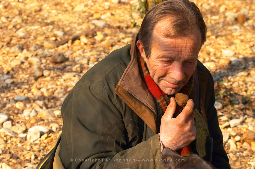 Eric Jaumard, the truffle hunter at La Truffe de Ventoux truffle farm sniffing a truffle, Vaucluse, Rhone, Provence, France