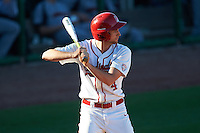 Ball State Cardinals pinch hitter Jeff Riedel (4) at bat during a game against the Louisville Cardinals on February 19, 2017 at Spectrum Field in Clearwater, Florida.  Louisville defeated Ball State 10-4.  (Mike Janes/Four Seam Images)