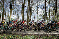 Peloton with World Champion Peter Sagan (SVK/Bora Hansgrohe) in the forest of the Schweiberg. <br /> <br /> 53th Amstel Gold Race (1.UWT)<br /> 1 Day Race: Maastricht &gt; Berg en Terblijt (263km)