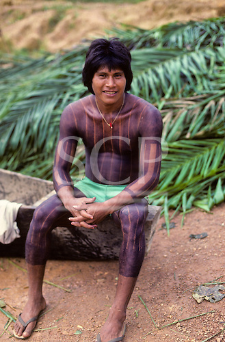 A-Ukre, Brazil. Bengoti, a Kayapo Indian warrior with black genipapo body paint with fresh palm leaves for thatch. Para State.