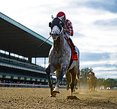 Grand Prix American Jockey Club Invitational - Marconi