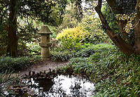 Japanese stone lantern focal point in shade by pond, San Francisco Botanical Garden